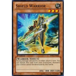 Shield Warrior - DP08-EN007