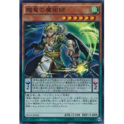 Peasant Dragon Magician‎ - SD29-JP004