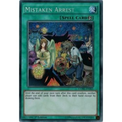 Mistaken Arrest - CORE-EN065