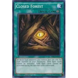 Closed Forest - YDT1-EN002