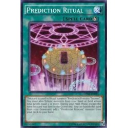 Prediction Ritual - OP02-EN025