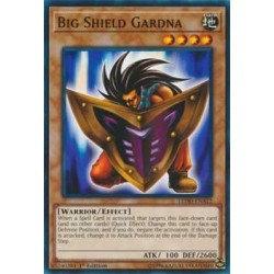 Big Shield Gardna - LEDD-ENA12