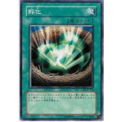 Insect Imitation - DL3-015
