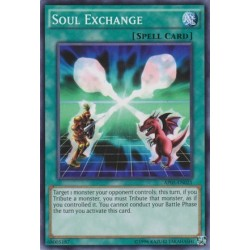 Soul Exchange - AP05-EN021