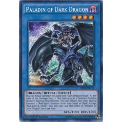 Paladin of Dark Dragon - DRL2-EN018 x