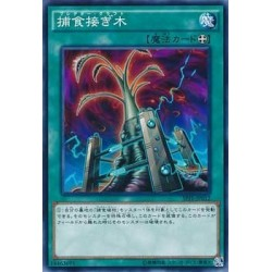 Predator Graft - SPFE-JP012 - Normal Parallel Rare