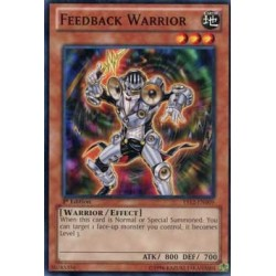Feedback Warrior - YS12-EN009