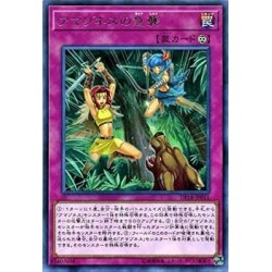 Amazoness Onslaught - DP18-JP011