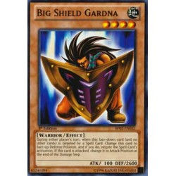 Big Shield Gardna - DPYG-EN009