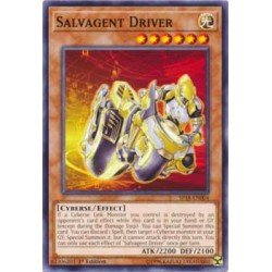 Salvagent Driver - SP18-EN004
