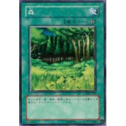 Forest - DL2-027