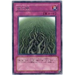 Wall of Thorns - CRMS-JP079