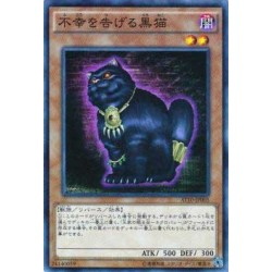 A Cat of Ill Omen - AT10-JP005