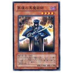 Skilled Dark Magician - SD6-JP006