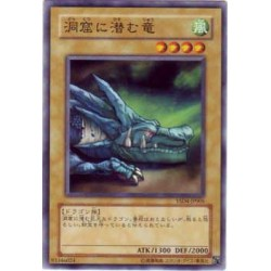 The Dragon Dwelling in the Cave - YSD4-JP005