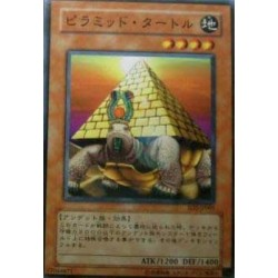 Pyramid Turtle - SD2-JP005