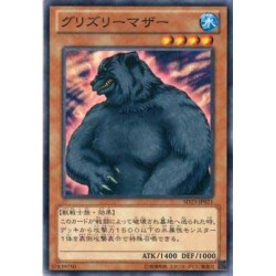 Mother Grizzly - SD23-JP021