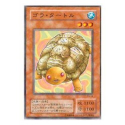 Gora Turtle - PH-14 - Usada
