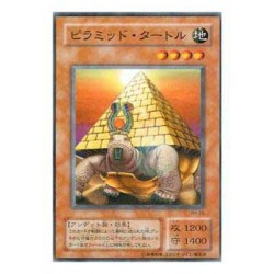 Pyramid Turtle - PH-26