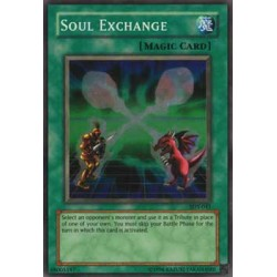 Soul Exchange - SDY-041