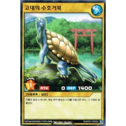 Turtle Keeper of Traditions - RD/KP01-KR003