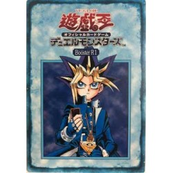 Card Booster 11