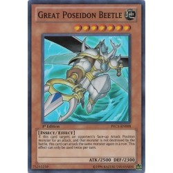 Great Poseidon Beetle - PRC1-EN008